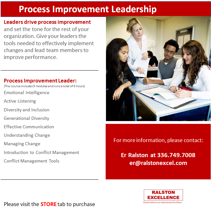 Process Improvement Leadership by Ralston Excellence